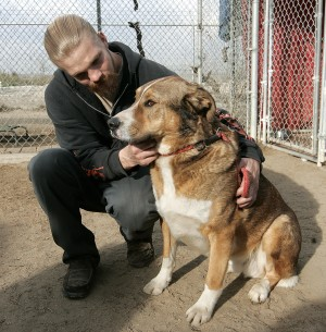 Adoption Event Brings Aging Pets and Elders Together