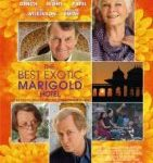 Best Exotic Marigold Hotel: an Entertaining Metaphor for Aging