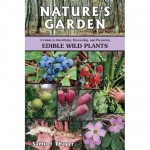 Nature's Garden: Edible Wild Plants, by Samuel Thayer