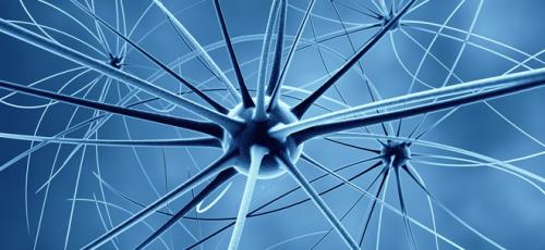 #DisruptDementia: Is Alzheimer's a Disease?