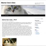 Siberian Cats in Eden