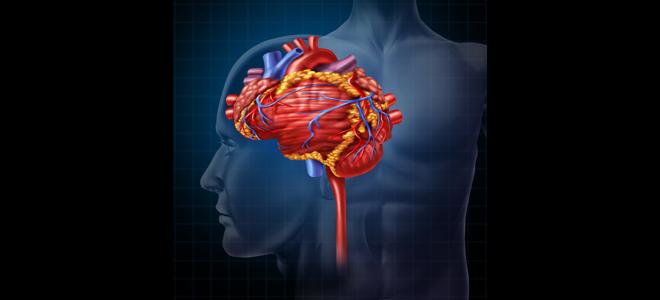head_heart